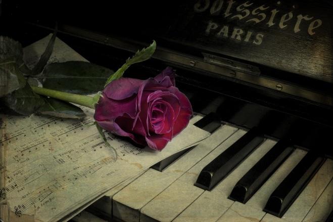 pianino-roza-cvetok-vintazh